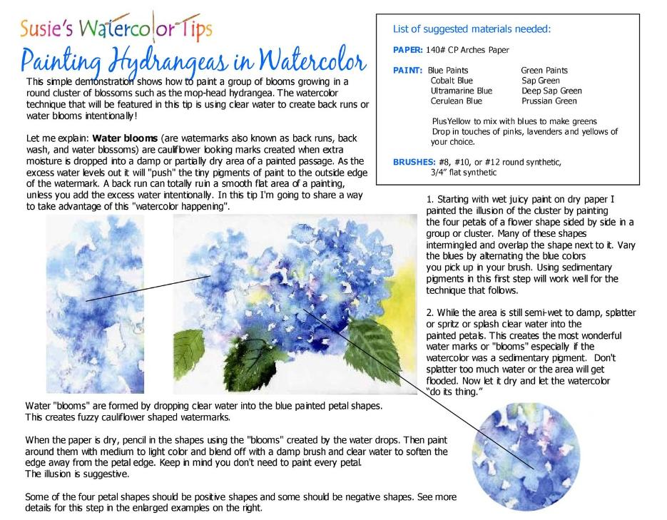 Painting Hydrangeas in Watercolor Free Tip