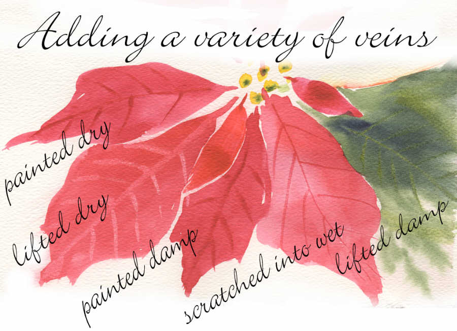 Painting Pretty Poinsettias - Watercolor Tips - by Susie Short
